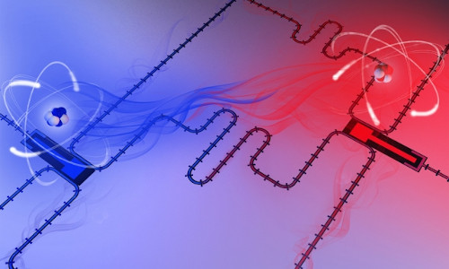Two superconducting qubits acting as giant artificial atoms.